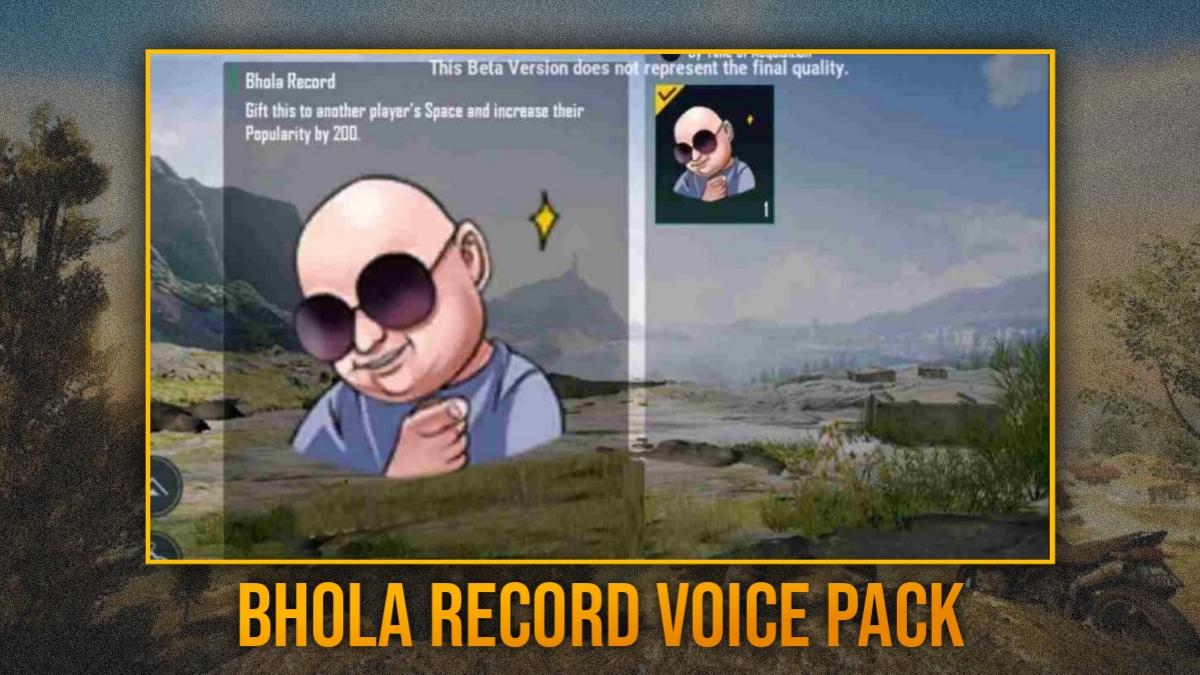 Punjabi voice pack